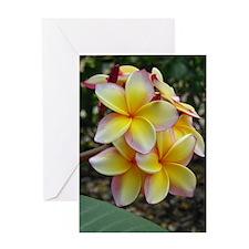 Yellow Plumeria Greeting Card