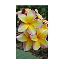 Yellow Plumeria Decal