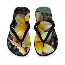 Yellow Plumeria Flip Flops