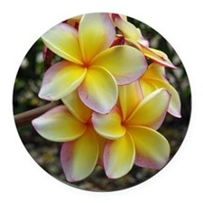 Yellow Plumeria Round Car Magnet