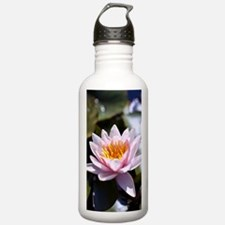 Pink Water Lily Water Bottle
