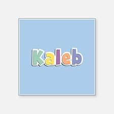 Kaleb Spring14 Sticker