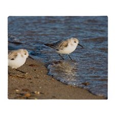 Sanderlings Throw Blanket