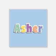 Asher Spring14 Sticker