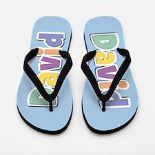 David Spring14 Flip Flops