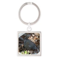 Quail and her Babies Square Keychain