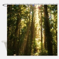 Cute Forest Shower Curtain