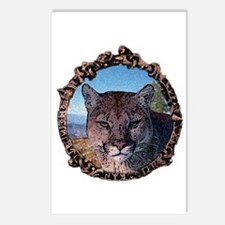 Mountain lion hunter Postcards (Package of 8)