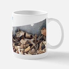 Baby Quail Mugs
