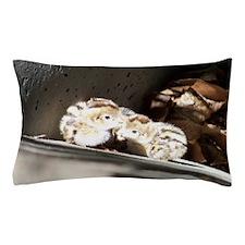 Baby Quail Pillow Case