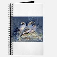 Watercolor California Quail Birds Journal