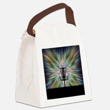 Disc Golf Basket Silhouette Canvas Lunch Bag