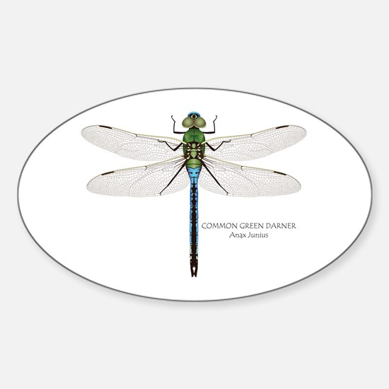 Common Green Darner Decal