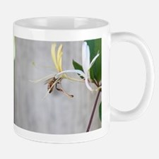Honeybee on Honeysuckle Mugs