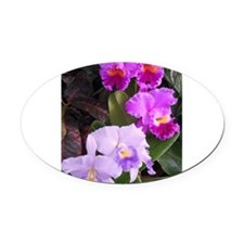 Orchids Oval Car Magnet