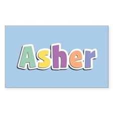 Asher Spring14 Decal