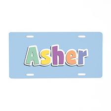Asher Spring14 Aluminum License Plate