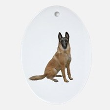 Belgian Malinois Ornament (Oval)