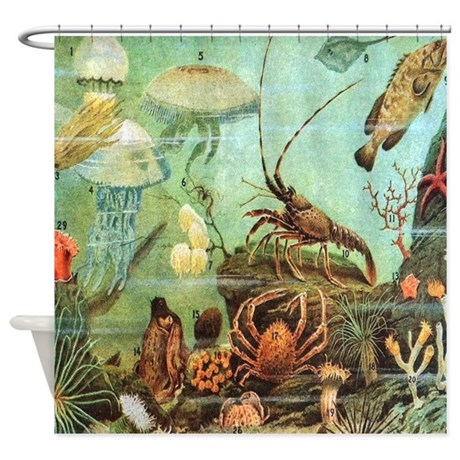 Vintage Colorful Sea Creatures Shower Curtain By Rebeccakorpita