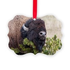 Christmas Bison Ornament