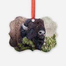 Christmas Bison Ornament