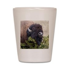 Christmas Bison Shot Glass