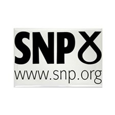 Snp Rectangle Magnet Magnets