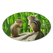 Two Chipmunks Decal