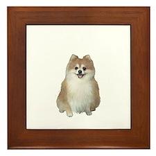 Pomeranian (A) Framed Tile