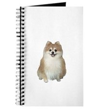 Pomeranian (A) Journal