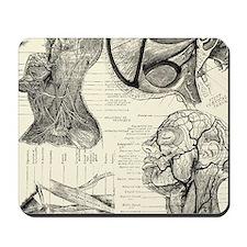 Anatomy Mousepad