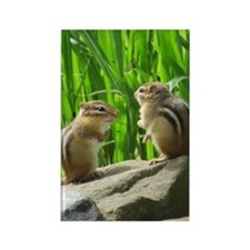 Two Chipmunks Magnets