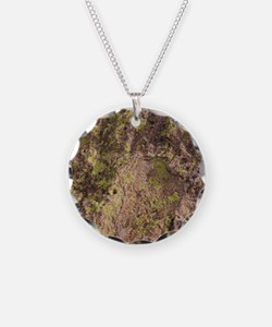 Lichen and Rock Necklace