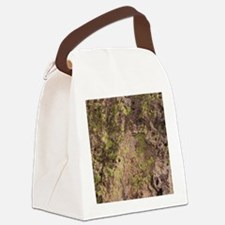 Lichen and Rock Canvas Lunch Bag