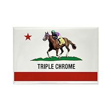 Funny Chrome Rectangle Magnet