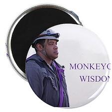 monkeycatWisdom Magnets