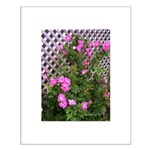 Roses and Trellis Small Poster
