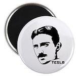 Nikola Tesla Magnet