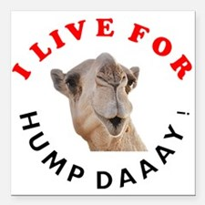 """Hump Day Square Car Magnet 3"""" x 3"""""""
