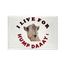 Hump Day Rectangle Magnet (100 pack)