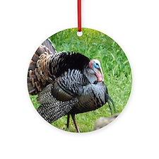 Cute Turkeys Round Ornament