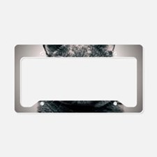 cool cat galaxy license plate holder