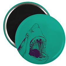 Shark (green) Magnets