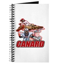 Canard 41 Journal