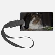 Giant French Lop Luggage Tag