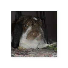 "Giant French Lop Square Sticker 3"" x 3"""