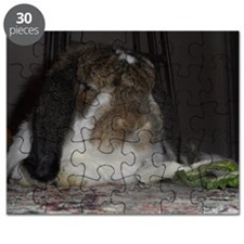 Giant French Lop Puzzle