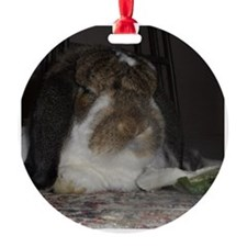 Giant French Lop Ornament