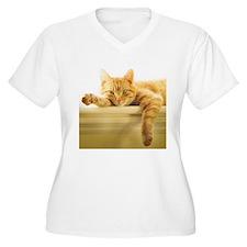 361701_1535 Plus Size T-Shirt