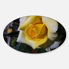Yellow Rose - Friendship Decal